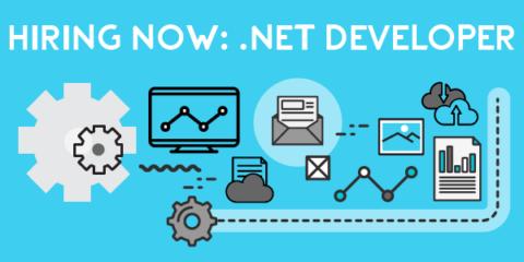 BizSoft .Net Developer
