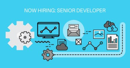 BizSoft Senior Developer